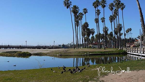 Santa Barbara (15)