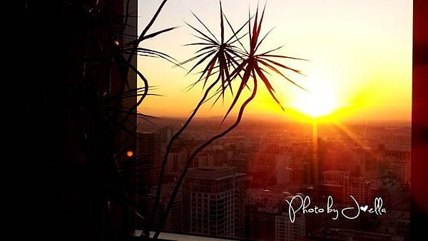 Ritz-Carlton Residences LA LIVE (15)