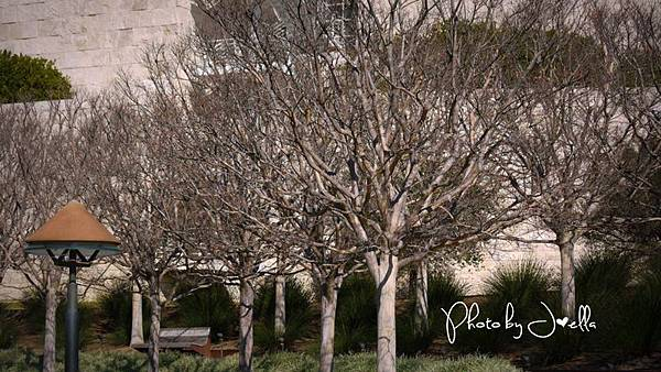 Getty Center (24)