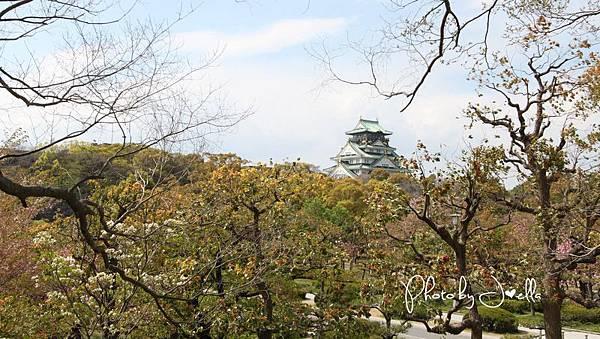 大阪城 (20)