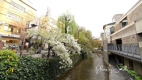 高瀬川 (2)
