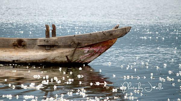 瀘沽湖 (8)