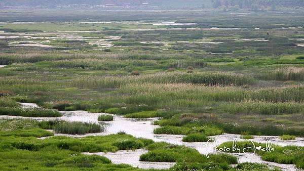 瀘沽湖 (10)