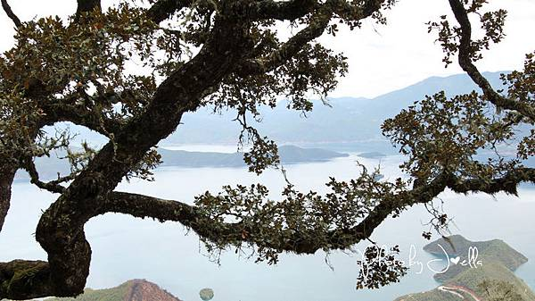 瀘沽湖 (33)
