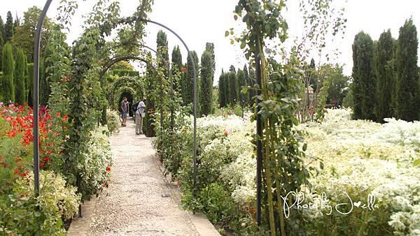 Alhambra (4).jpg
