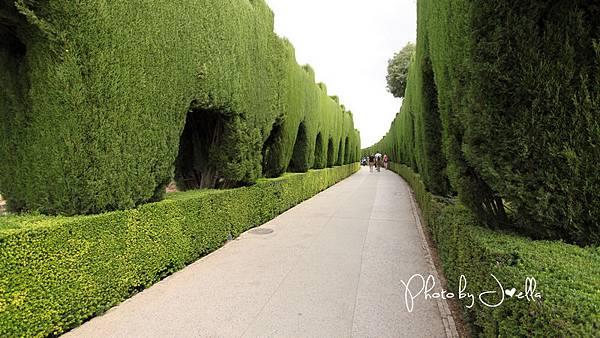 Alhambra (10).jpg