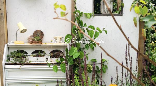 國際花園節_BLOG (3).jpg