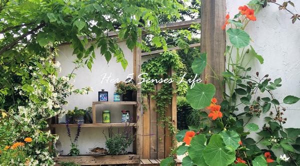 國際花園節_BLOG (2).jpg