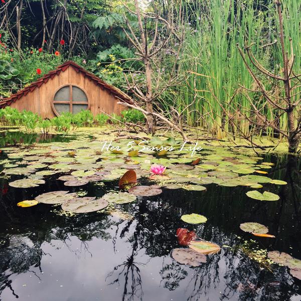 國際花園節_BLOG (14).jpg