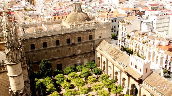 Sevilla (27).jpg