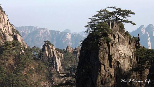 黃山 (7).jpg