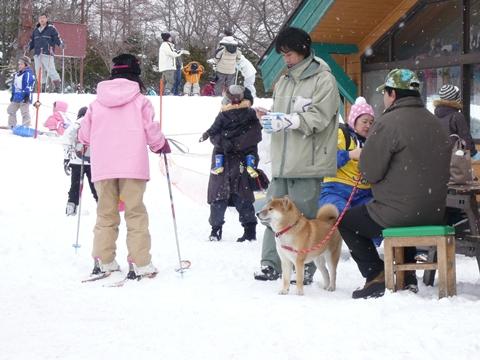 草津滑雪場01.jpg