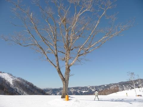 滑雪場03.JPG