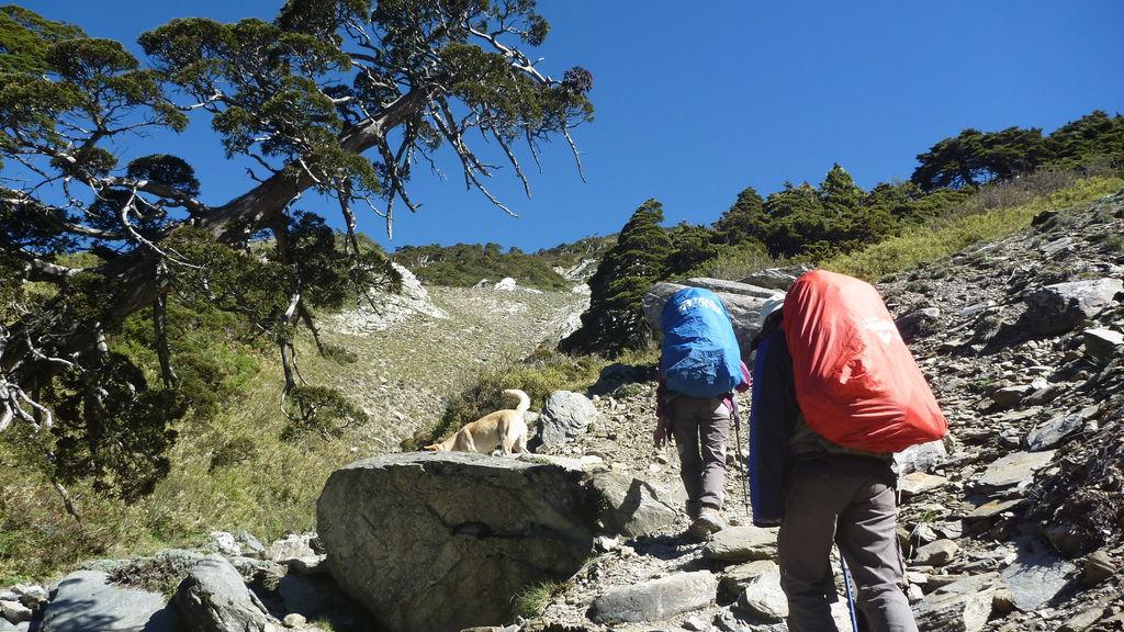 小白陪同爬上可怕的長陡坡
