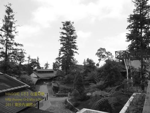2011 南投內湖國小 006.jpg