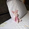 2011 台東行第三天 001.jpg