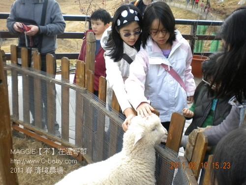 2011 春 清境農場 007.jpg