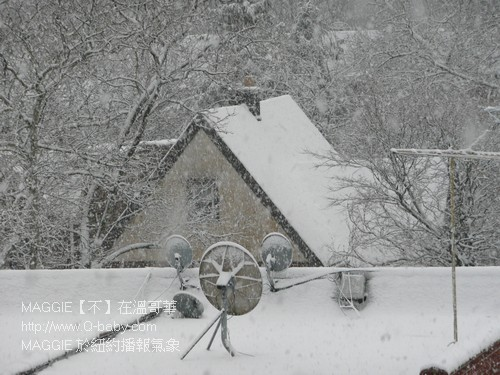 MAGGIE 於紐約播報氣象 02.jpg
