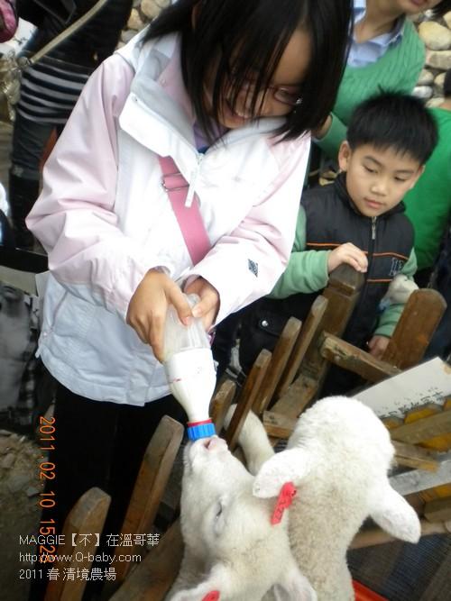 2011 春 清境農場 010.jpg