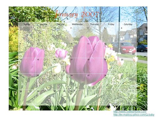 /home/service/tmp/2009-03-05/tpchome/1777820/616.jpg