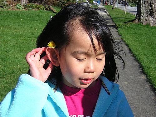 /home/service/tmp/2009-03-05/tpchome/1777820/1098.jpg