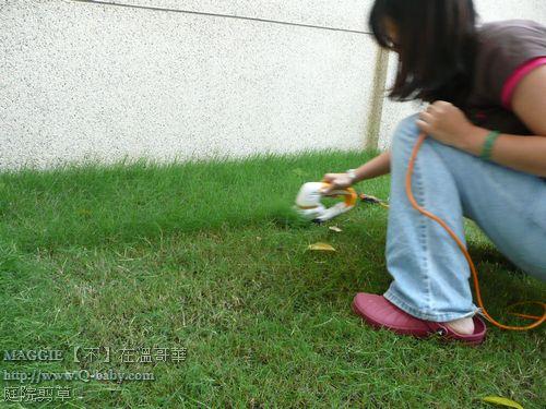 庭院剪草 05.jpg