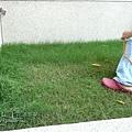 庭院剪草 07.jpg