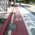自行車政策 17.JPG