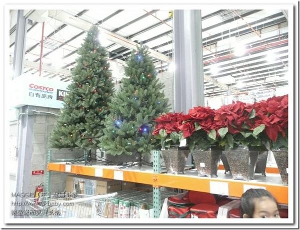 聖誕樹 02