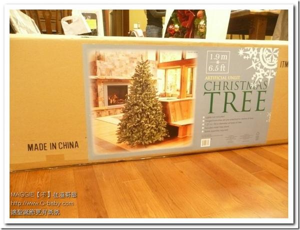 聖誕樹 03