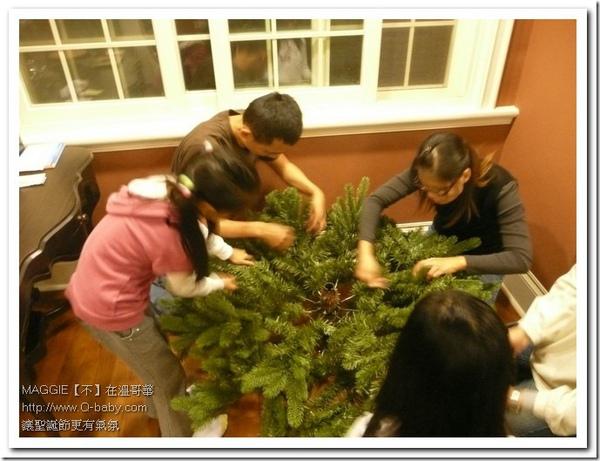 聖誕樹 06