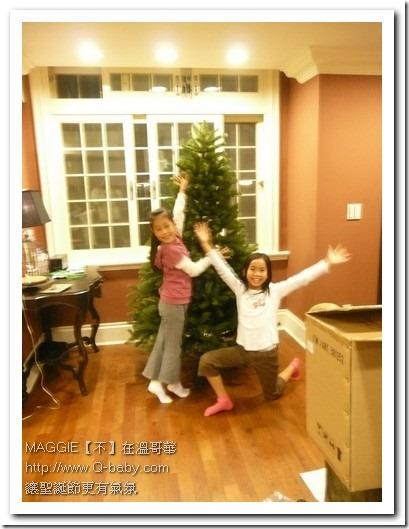 聖誕樹 07