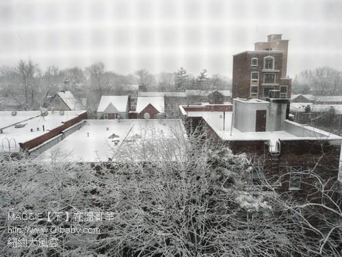 紐約大風雪 01.jpg