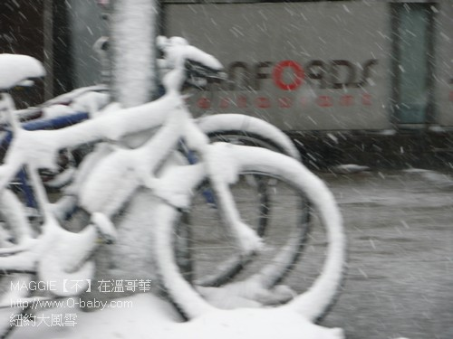 紐約大風雪 05.jpg
