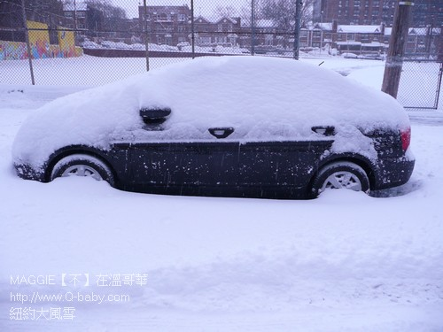 紐約大風雪 11.jpg
