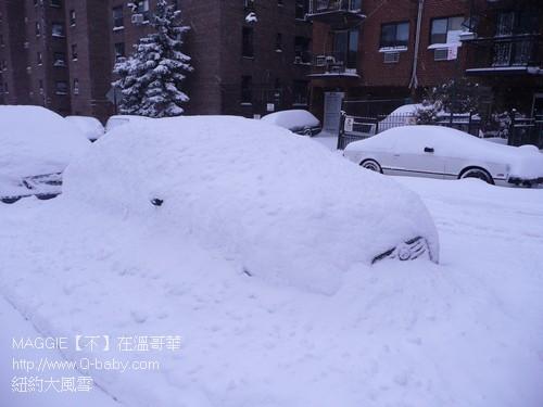 紐約大風雪 14.jpg