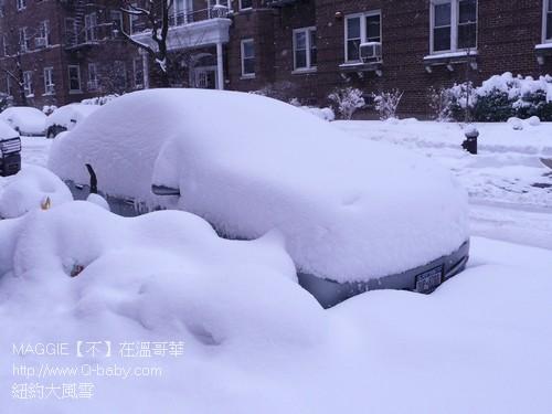 紐約大風雪 15.jpg