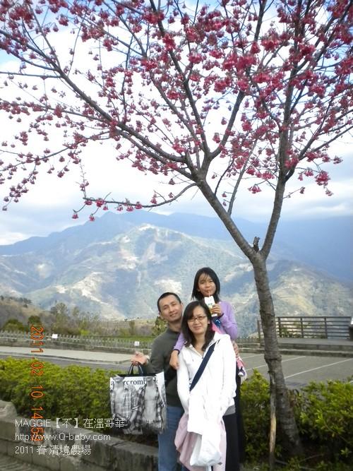 2011 春 清境農場 006.jpg