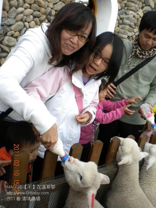2011 春 清境農場 008.jpg