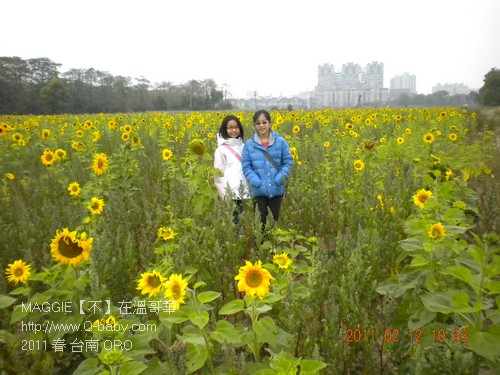 2011 春 台南 ORO 005.jpg
