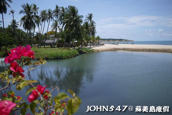 蘇美島騎機車環島6拉邁海灘 Lamai Beach11.jpg