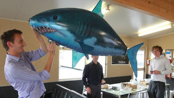 飛天鯊魚 SHARK TOY.jpg