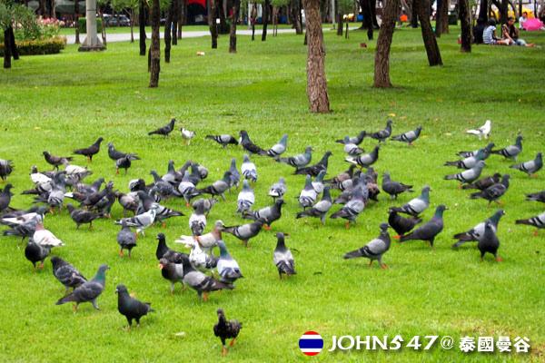Mo chit蒙奇站Chatuchak Park札都甲(恰圖恰)公園5.jpg