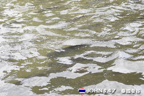 泰國曼谷Khlong Bangkok Yai運河長尾船13.jpg
