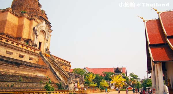 清邁自由行- Wat Chedi Luang Worawihan柴迪隆寺 大佛塔寺 聖隆骨7.jpg