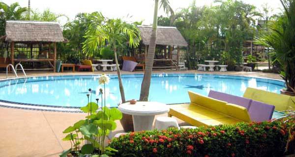 素可泰Orchid Hibiscus Guest House 蘭花芙蓉賓館  pool.jpg