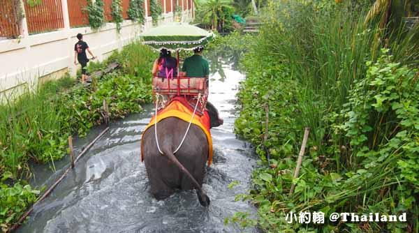 丹能莎朵大象園Chang Puak Camp Damnoen Saduak叢林騎大象 Elephant ride 3.jpg