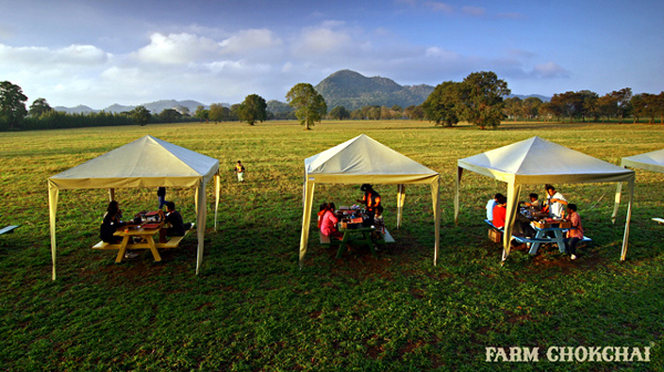 泰國考艾最大畜牧農場 Farm Chokchai 做冰淇淋,騎馬,擠牛奶4.jpg