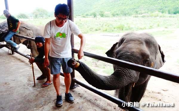 泰國甘加那汶里Kanchanaburi大象世界Elephants World-john與johnny
