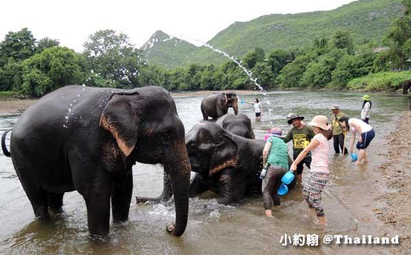 泰國大象世界Elephants World為大象工作@Kanchanaburi2.jpg